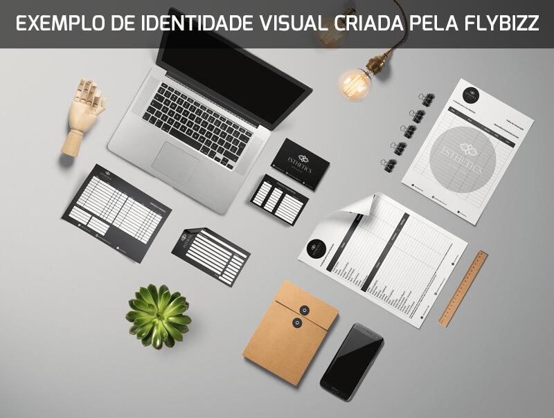 identidade-visual-exemplo-flybizz
