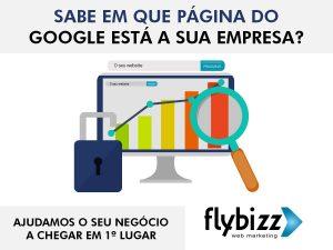 flybizz-pagina-google