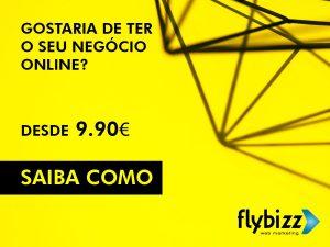 flybizz-negocio-online